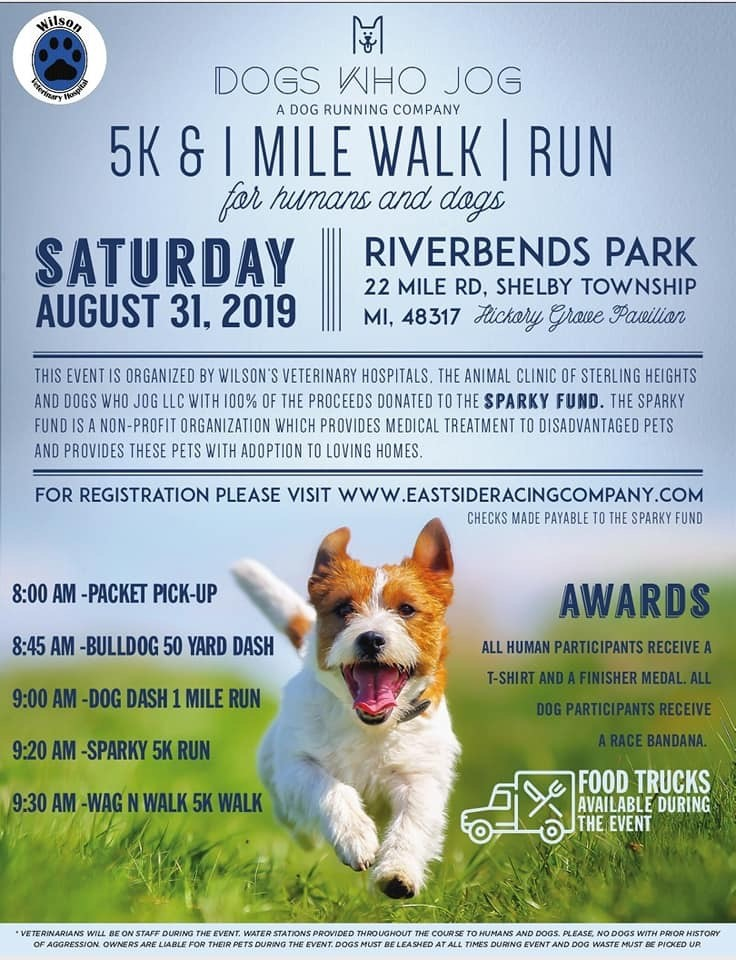 Dogs Who Jog Charity Event
